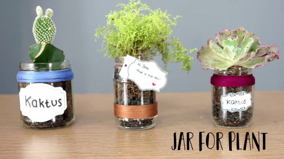 YooTips: Jar For Plant